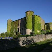 Hotel Pictures: Château de Villarlong, Villarzel-Cabardès