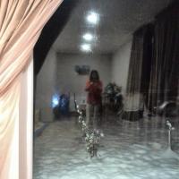 Φωτογραφίες: Tskhneti guest house, Tsqnet'i