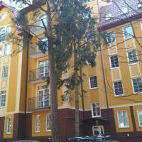 Zdjęcia hotelu: Апартаменты на Садовой, Svetlogorsk