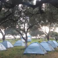 Hotelbilleder: Gold camping & caravan park, Borsh