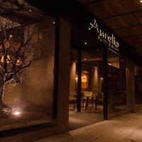Photos de l'hôtel: Aurelio Hotel & Apart, Concepción