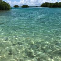 Φωτογραφίες: Royal Palm Island Resort, Πόλη του Μπελίζ