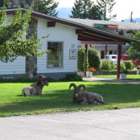 Hotel Pictures: Mountain Springs Motel, Radium Hot Springs