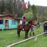 Zdjęcia hotelu: Cabaña del lago lleu lleu, Contulmo