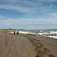 Hotel Pictures: Playa Pangal, Pichilemu