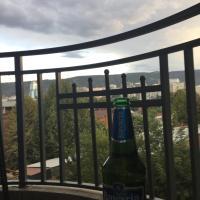 Hotellikuvia: Irodion Evdoshvili Street, Badzhiti