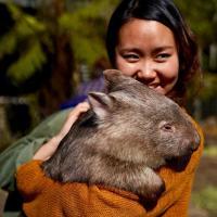 酒店图片: 澳大利亚野生动物酒店, Lavers Hill
