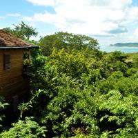 Forest View Deluxe Tree House Suite