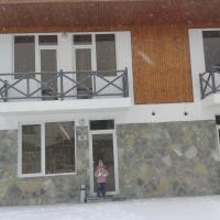 Hotel Pictures: Cottages Next to Ski Slope, Bakuriani