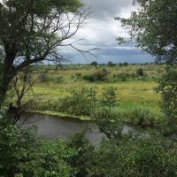 Hotellikuvia: Sharwimbo River Camp, Luzibalule
