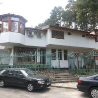 Hotel Pictures: Guest House Cheshmeto, Kyustendil