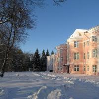 Hotelfoto's: Seliger Palace Hotel, Novie Eltsy