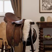 Equestrian-Themed One-Bedroom Apartment