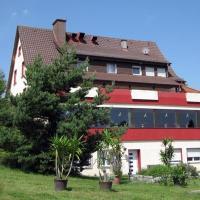 Hotelbilleder: Hegaustern, Engen