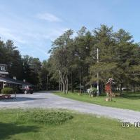Hotel Pictures: Pinecone Motel, Sussex