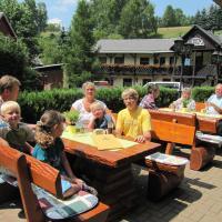 Hotel Pictures: Hotel Seiffener Hof, Seiffen