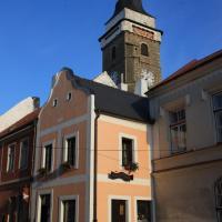 Hotel Pictures: Apartmány pod věží, Slavonice