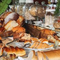 Hotel Pictures: Binder Quality Inn, Mogi das Cruzes