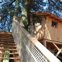Tree House - Valley View