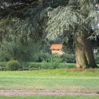Tree House - Chateau View