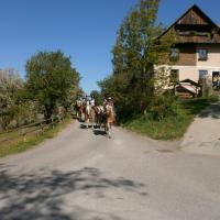 Hotel Pictures: Reitbauernhof Ferner, Mühlen