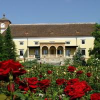 Hotel Pictures: Spa Hotel Schloss Weikersdorf, Baden