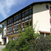 Hotel Pictures: Gasthof Löwen, Schönegründ
