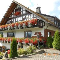 Hotel Pictures: Pension Sonnenblick, Winterberg