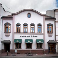Hotel Pictures: Penzion Zelená Žába, Pardubice