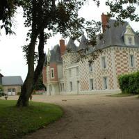 Hotel Pictures: Chateau La Vallière, Nazelles