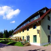 Hotel Pictures: Waldhotel am Aschergraben, Geising