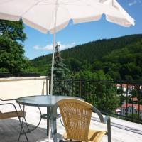 Hotel Pictures: Hotel Waldhaus-Hutzelhöh, Ruhla