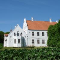 Hotel Pictures: Nørre Vosborg, Vemb