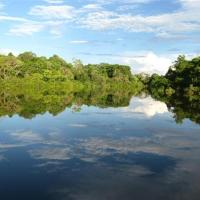 Hotel Pictures: Reserva Natural Heliconia Amazonas, Leticia