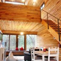 One-Bedroom Apartment - Treehouse