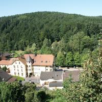 Hotel Pictures: Hotel zum Engel, Mespelbrunn