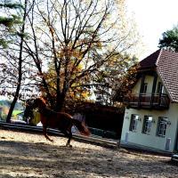 Hotel Pictures: Römerhütte, Sankt Lorenzen am Wechsel