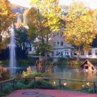 Hotel Pictures: Parkhotel Am Schwanenteich, Bad Sooden-Allendorf