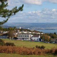 Hotel Pictures: Somerfield Lodge, Swansea