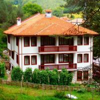 Hotel Pictures: Hotel Mitnitsa and TKZS Biliantsi, Arda