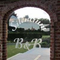 Hotel Pictures: B&B Silentium, Tielt