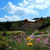 Hotel Pictures: Berghotel Mooshütte, Lohberg