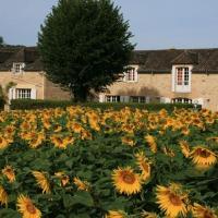 Hotel Pictures: Domaine des Hirondelles, Saint-Vincent-de-Cosse
