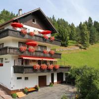 Hotel Pictures: Pension Rehblick, Enzklösterle
