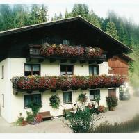 Hotel Pictures: Appartement Haitzmann, Lungötz