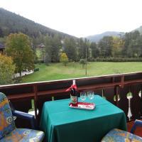 Hotel Pictures: Schwarzwaldhaus am Kurpark, Enzklösterle