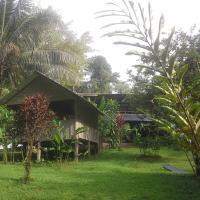 Hotel Pictures: Estación Biológica Tamandua, Drake