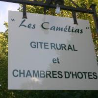 Hotel Pictures: Les Camélias, Cravant-les-Coteaux