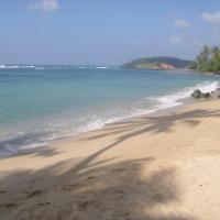 Hotelfoto's: SunRay Rest - Beach View Homestay, Mirissa