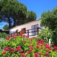Hotel Pictures: La Fourmi du Levant, Île du Levant